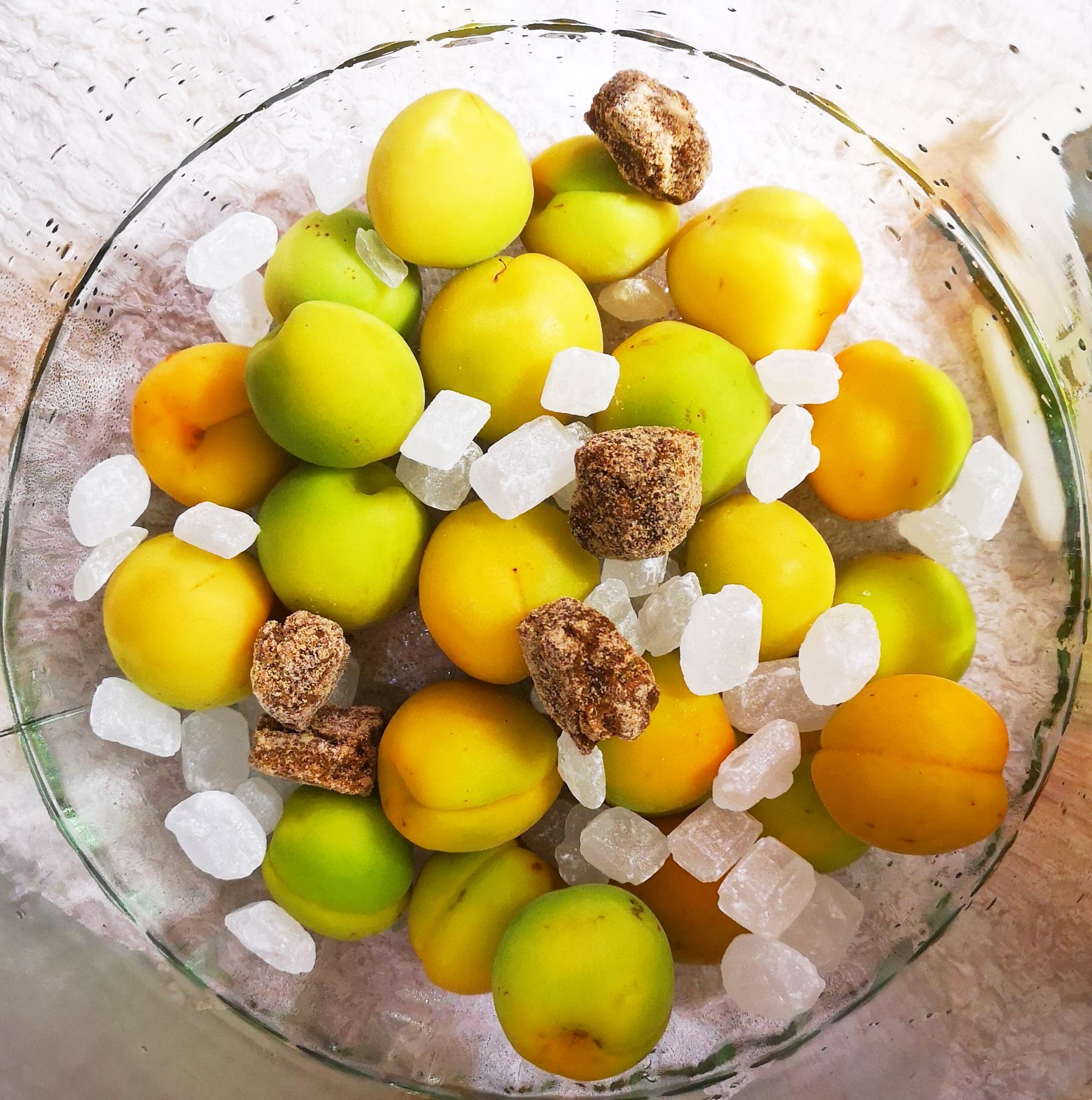 「ひがしね梅」×日本酒×黒糖を使って梅酒作り