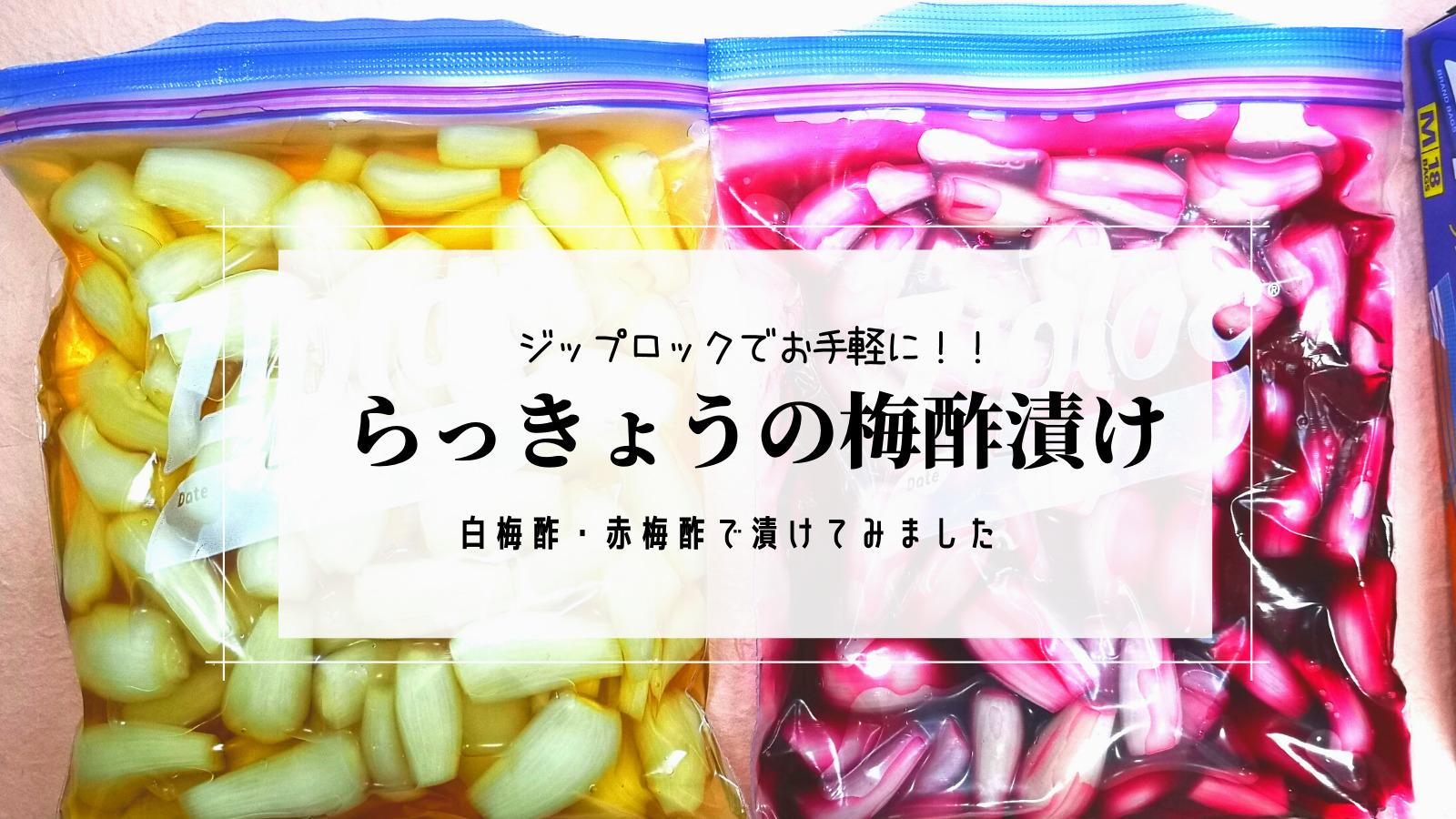 【らっきょうの梅酢漬け 500g/250g】ジップロック(キッチンバック)でお手軽に!